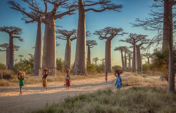 Oferte MADAGASCAR