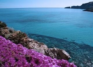 Oferte Mallorca